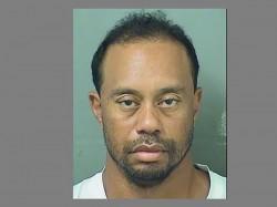 Tiger Woods Arrested On Suspicion Driving Under Influence