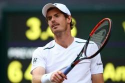 Andy Murray Down Australian Open