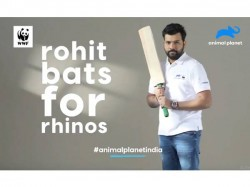 Rohit To Launch Rohit4rhinos Campaign