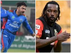 Afgan Sensation Rashid Khan And Russel Picks But Gayle Missed Out Hundred Draft