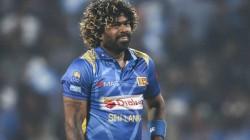 Srilankan Captain Malinga Blames Himself For The Series Loss Against India