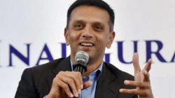 Why Csk Always Wins And Rcb Loses Rahul Dravid Points Out Difference