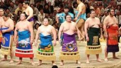 Japanese Sumo Wrestler Tests Positive For Coronavirus
