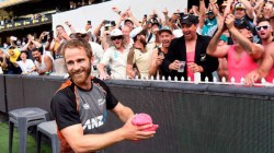 Williamson And Suzie Bates Elected As Best Odi Players Of Newzealand