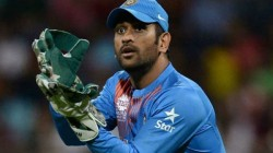Ms Dhoni Fans And Csk Start Social Media Trend Slamming Rumours Of His Retirement