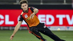 Sunrisers Hyderabad Allrounder Mitchell Marsh Ruled Out Of Ipl 2020 Jason Holder Named Replacement