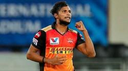 Ipl 2021 Mohit Sharma To Stuart Binny Players Who Can Replace T Natarajan At Sunrisers Hyderabad